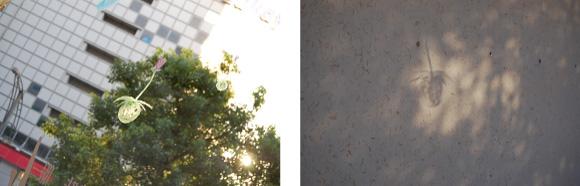 めぐり・ウインドー・ギャラリー第11弾はラジーゴ松井秀樹さんとhiromiさんの<夢くじら>(2011年9月10日〜9月30日)