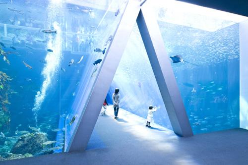 アクアマリンふくしま水族館でのワークショップ:キッズアート展「空およぐ!私たちの海」にキットパスで協力参加しました。(2012年9月22日、23日)